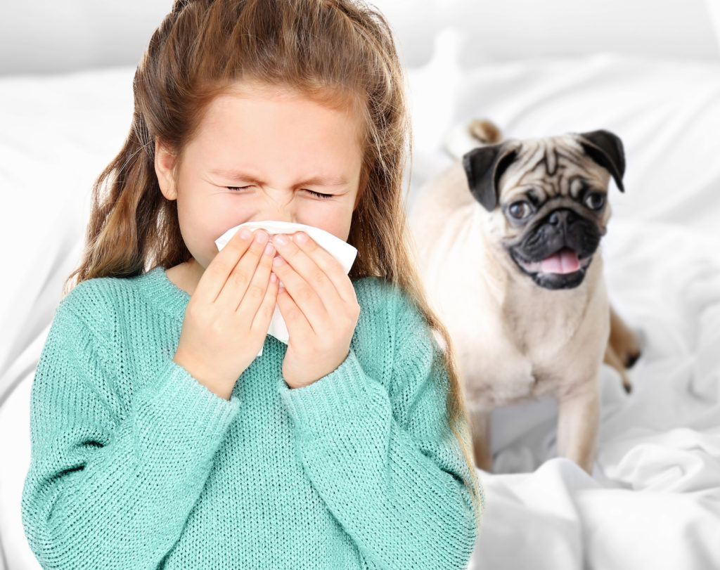 Little girl blowing nose on bed with dog